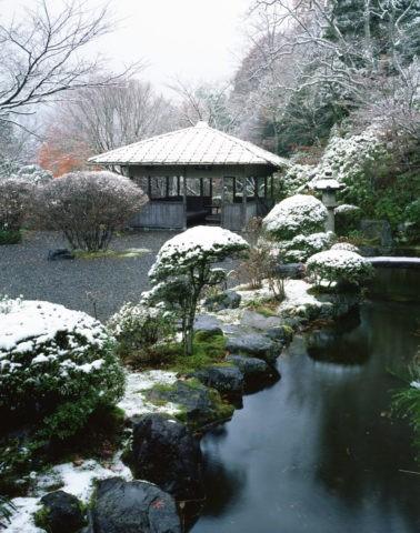 白龍園の雪