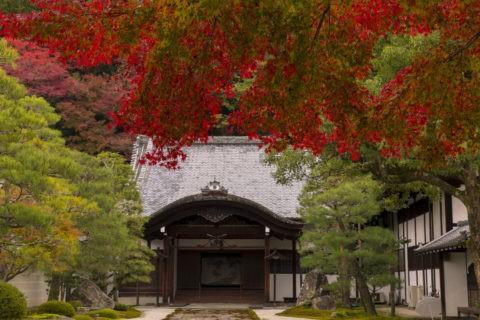 南禅寺方丈 紅葉