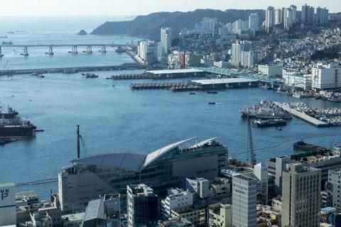 釜山タワーからの釜山南港