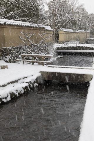 雪降る上賀茂社家町