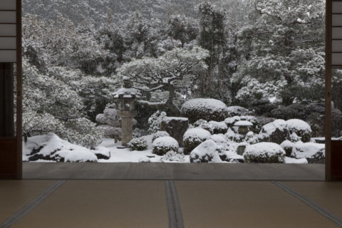 雪の妙満寺庭園