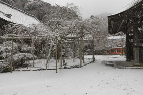 雪の山科毘沙門堂寝殿