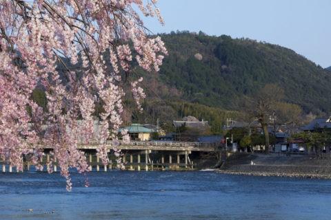小倉山と桜