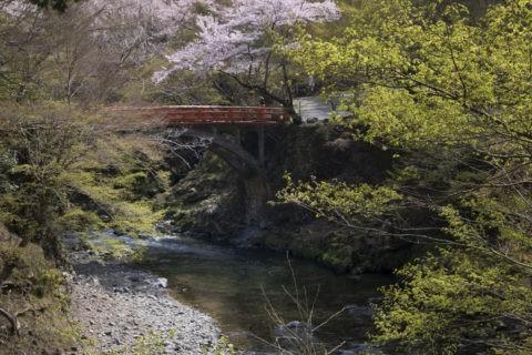 高雄清滝川と橋