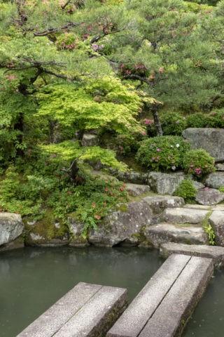 百済寺 庭園