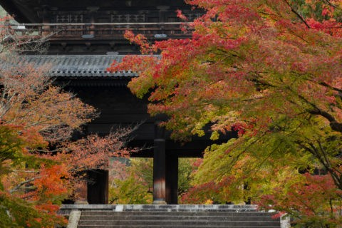 紅葉の南禅寺三門