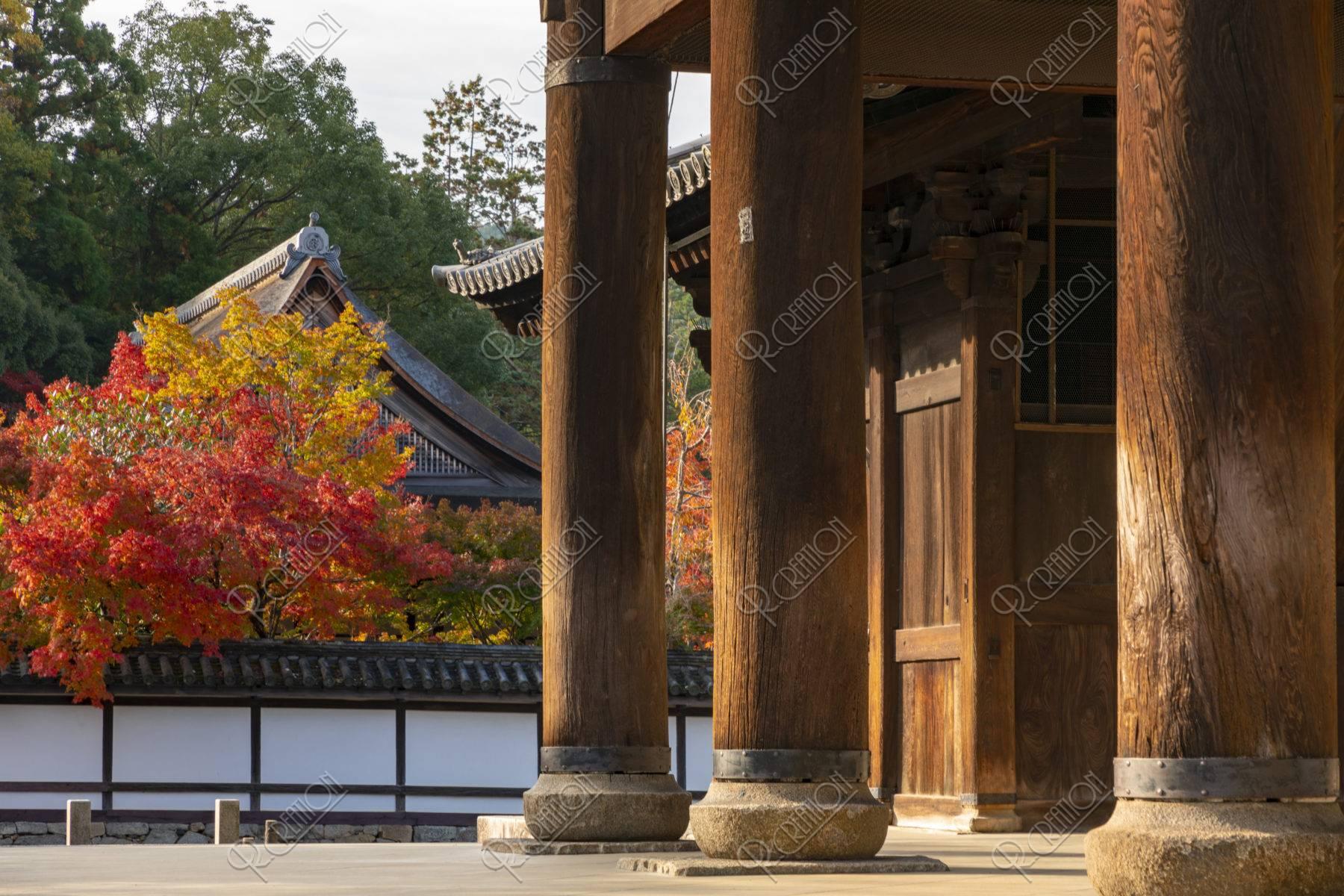 南禅寺三門と紅葉の天授庵