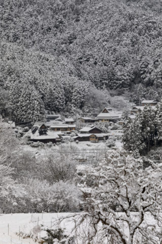 大原の里 雪景色