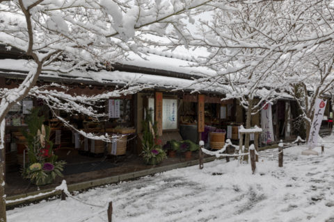 雪の三千院 参道