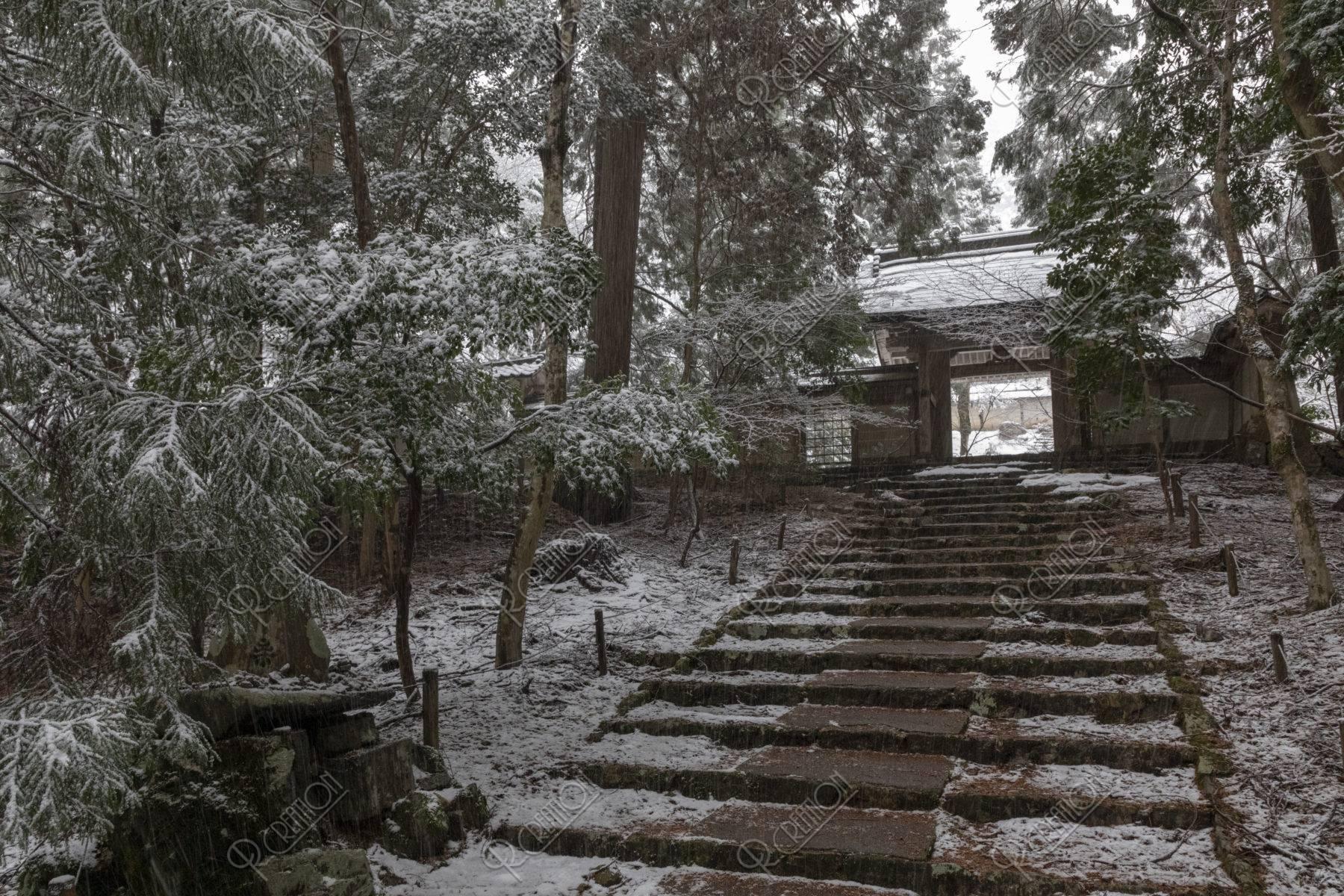 常照皇寺 参道  雪景色
