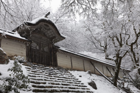 常照皇寺 勅使門  雪景色