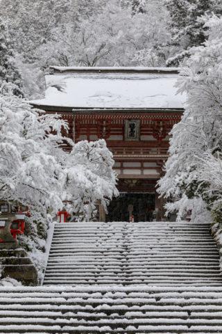 雪の鞍馬寺 山門