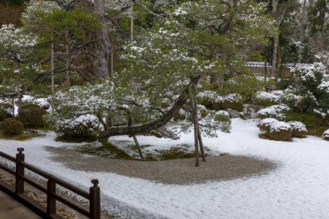 雪の曼殊院 庭園