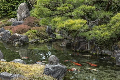 城南宮 楽水苑