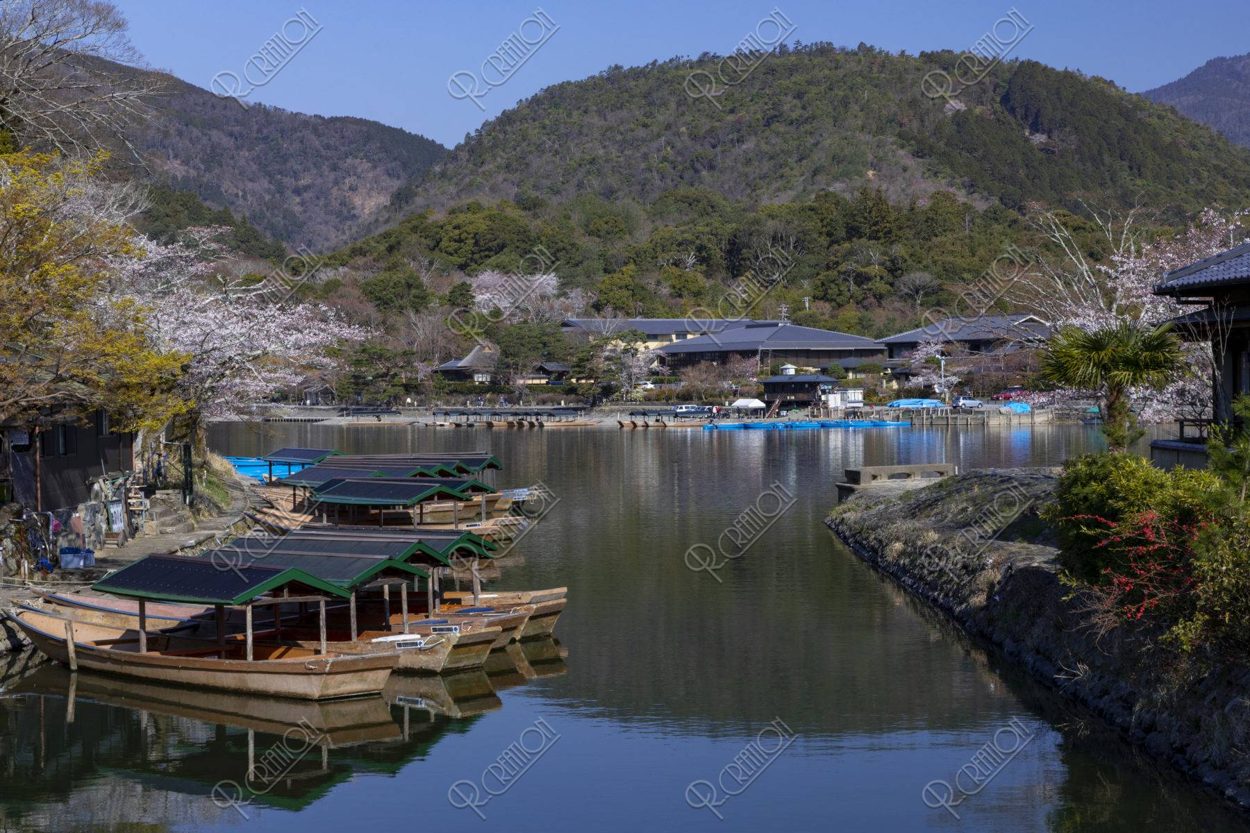 嵐山小倉山と桜