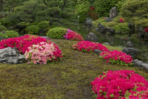 城南宮 城南離宮の庭
