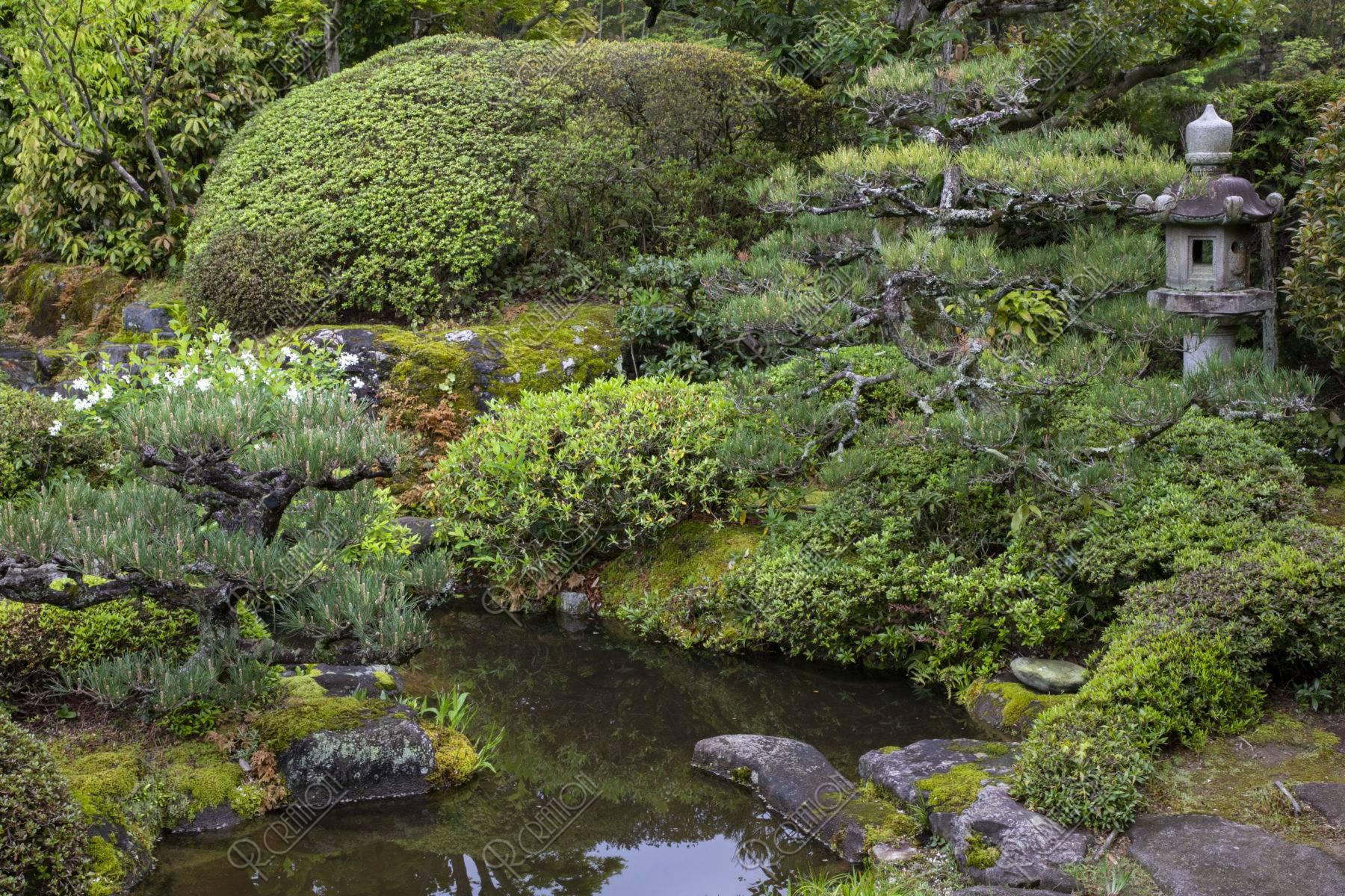 正法寺 庭園