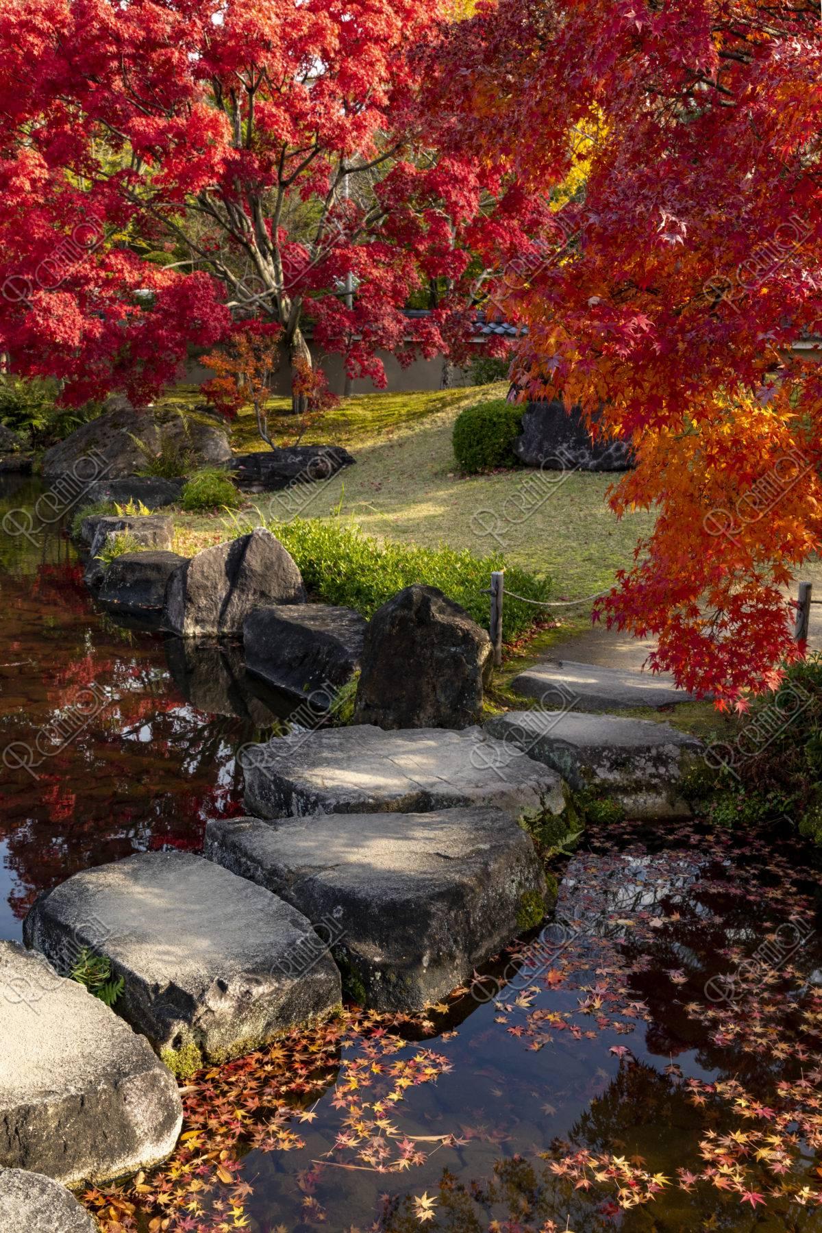 好古園 紅葉と飛石