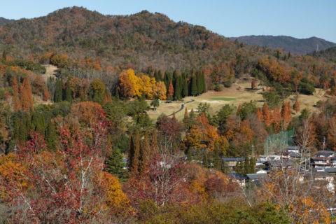 陶芸の森からの秋の信楽町