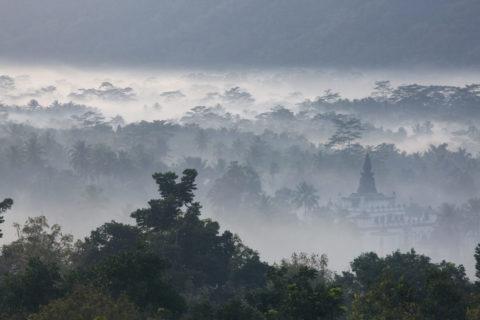 ボロブドゥールからの霞む密林