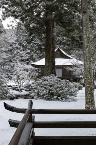 雪の三千院 往生極楽院