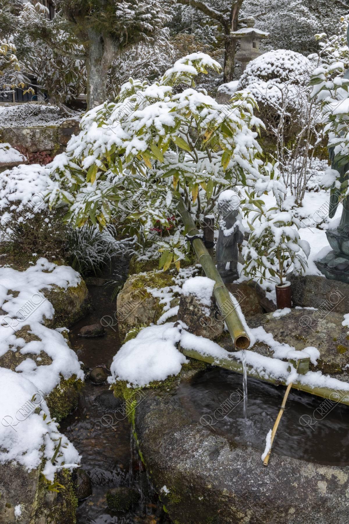 雪の実光院 蹲