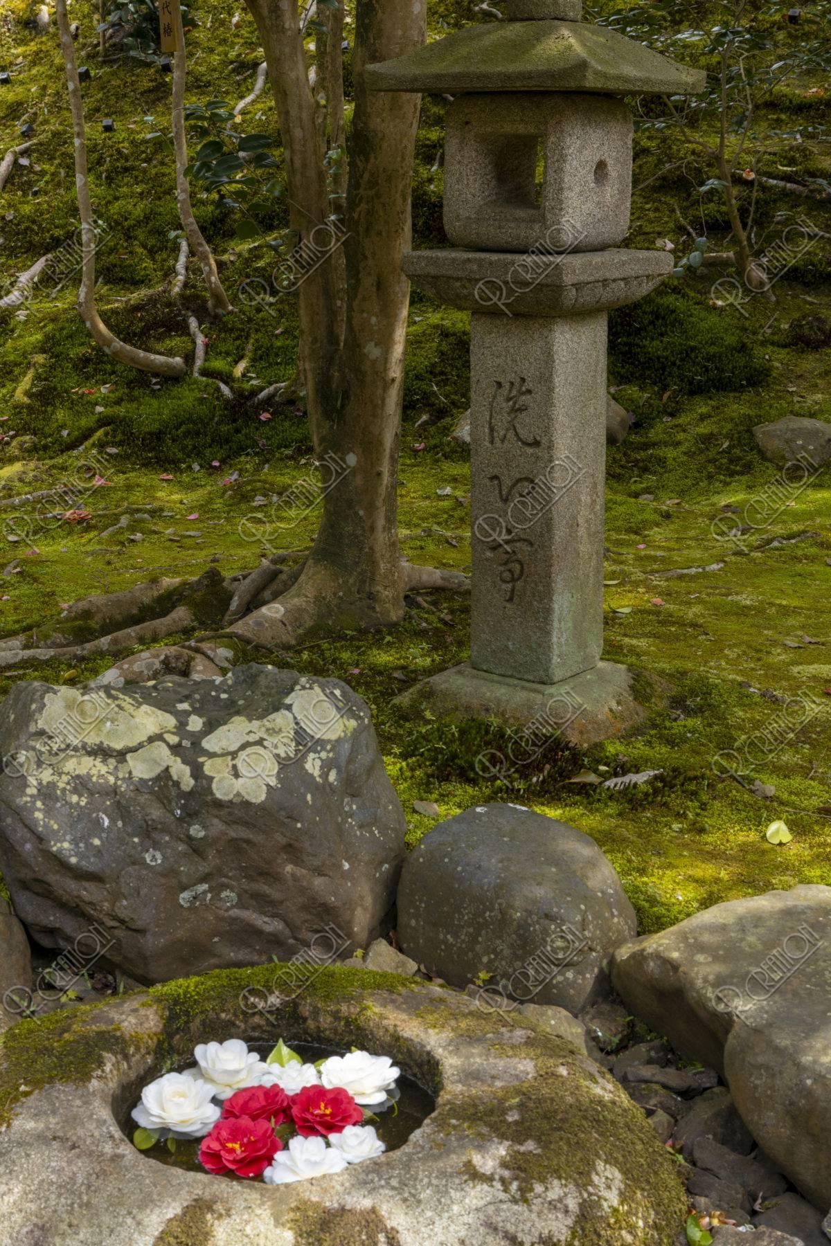 霊鑑寺 蹲踞と灯籠