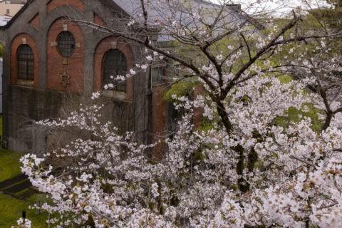 蹴上発電所と桜