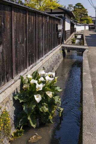 五個荘近江商人屋敷