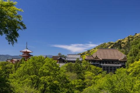 新緑の清水寺全景