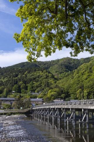 新緑の嵐山渡月橋