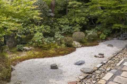 二尊院 庭園