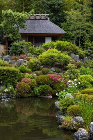 等持院 庭園