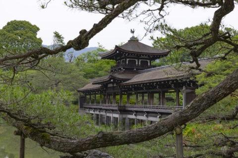 平安神宮神苑 松と橋殿