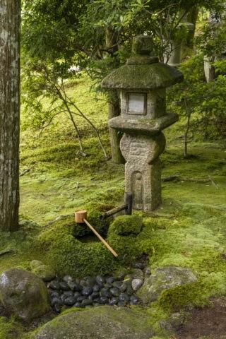 旧竹林院 灯籠と蹲踞