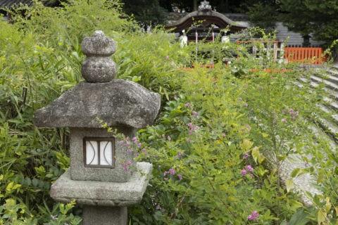 下鴨神社 萩と灯籠