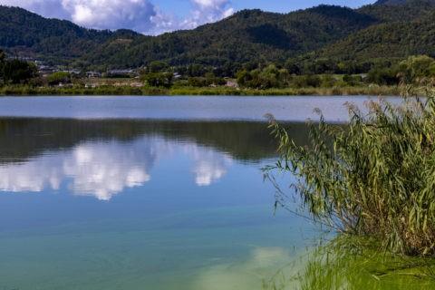 秋の広沢池と遍照寺山