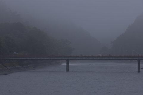 朝霧橋と宇治川の朝霧