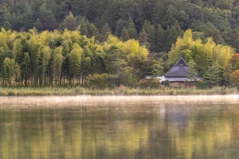 広沢池の朝靄