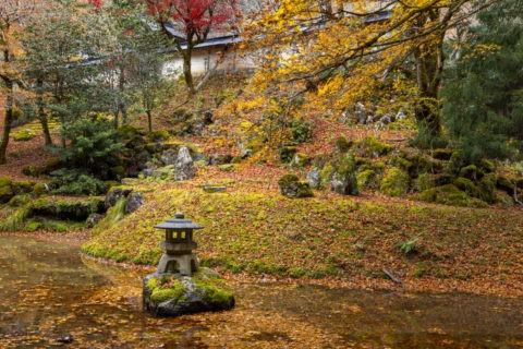 常照皇寺 池中の灯篭