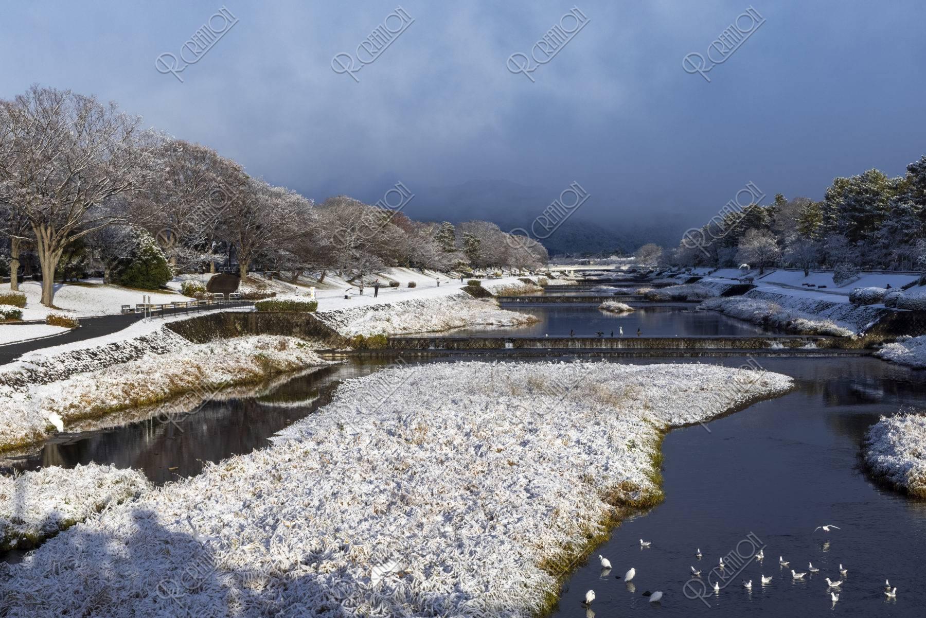 北大路橋からの賀茂川雪景色