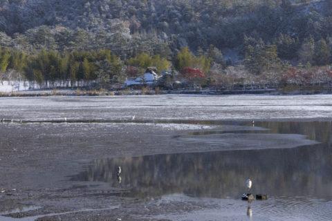 広沢池 雪景色
