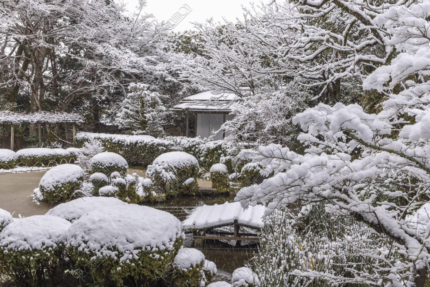 雪の詩仙堂 残月軒