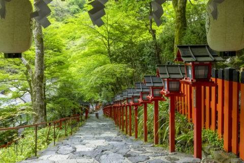 新緑の貴船神社参道