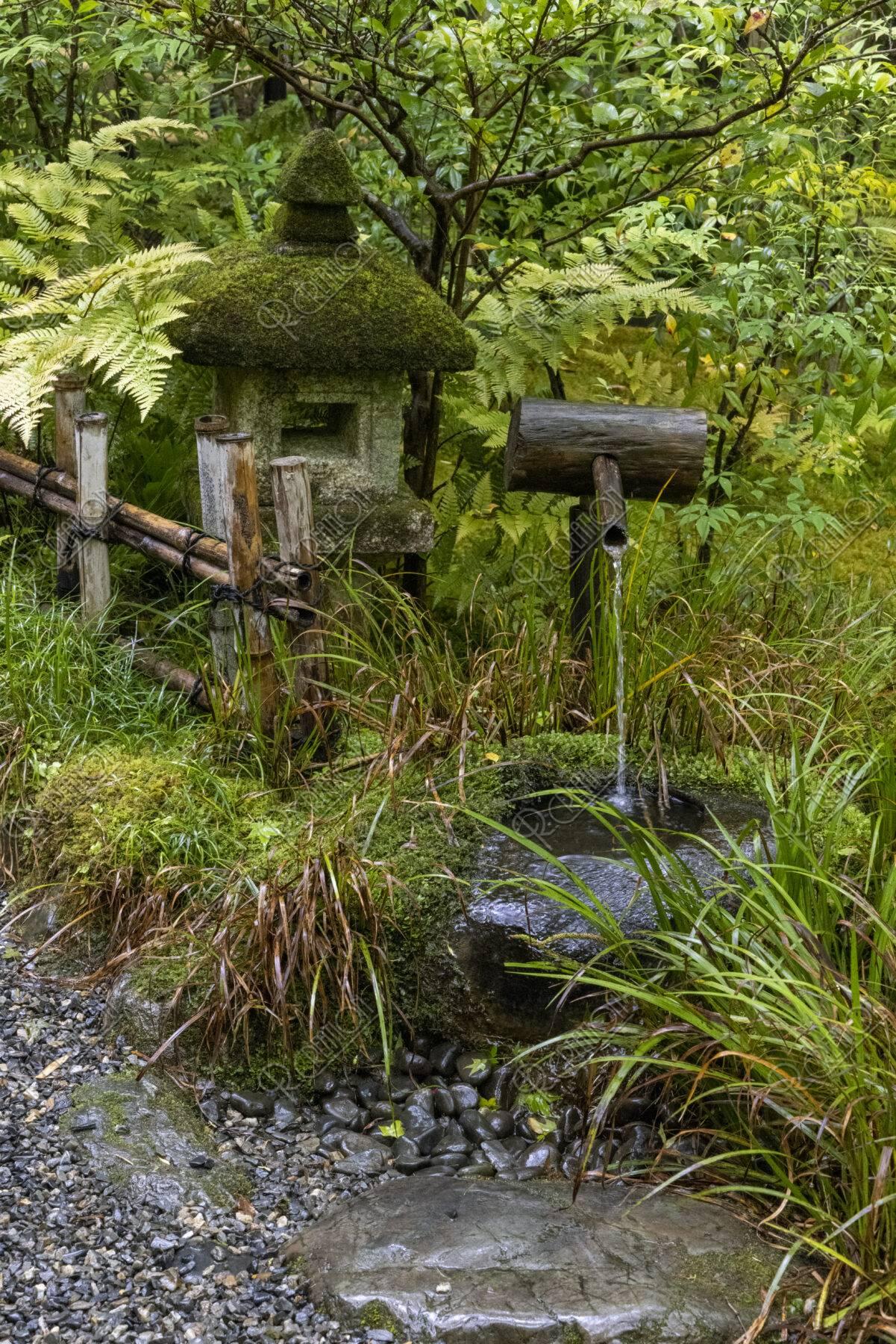 新緑の祇王寺 蹲踞と灯籠