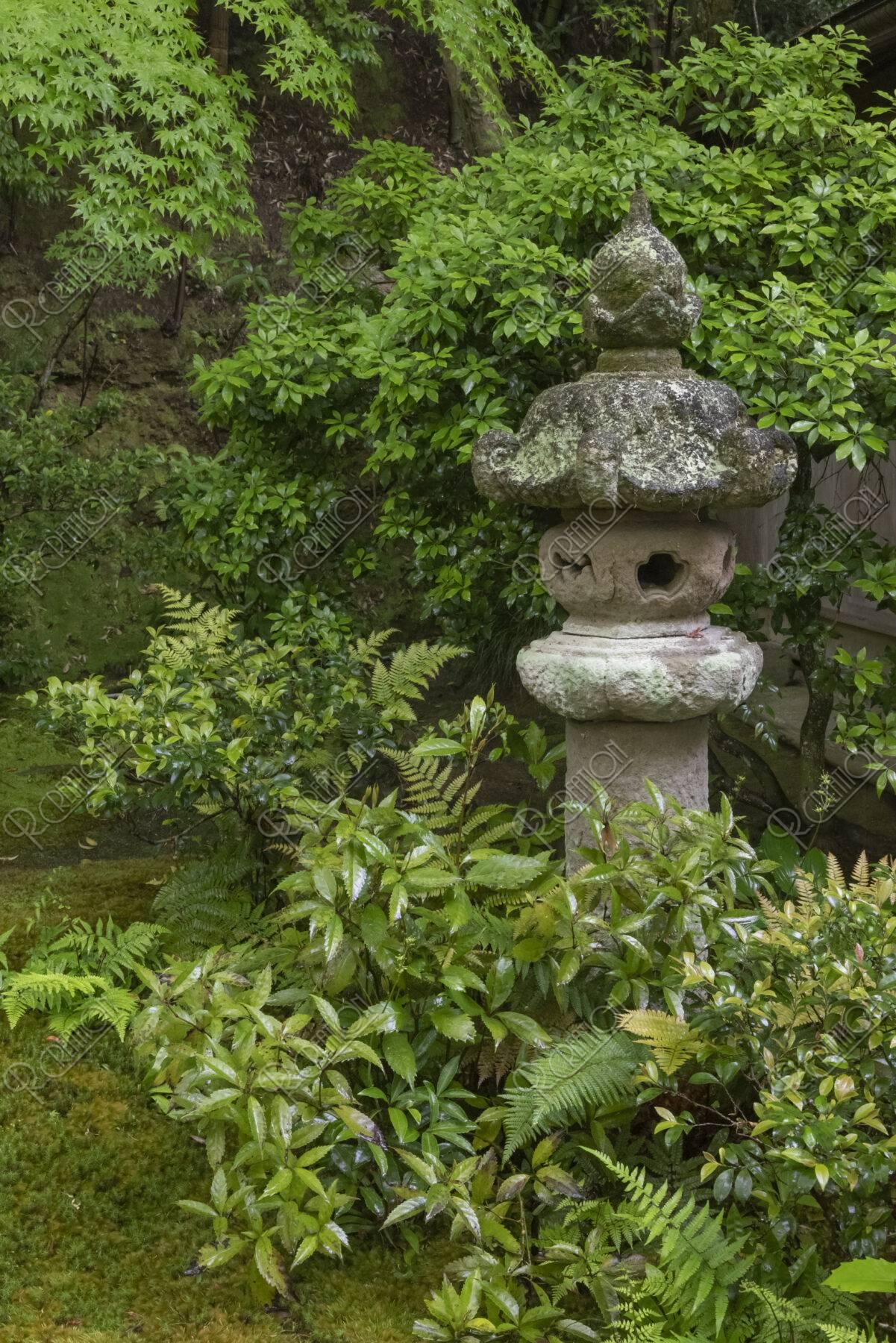 新緑の祇王寺 灯籠