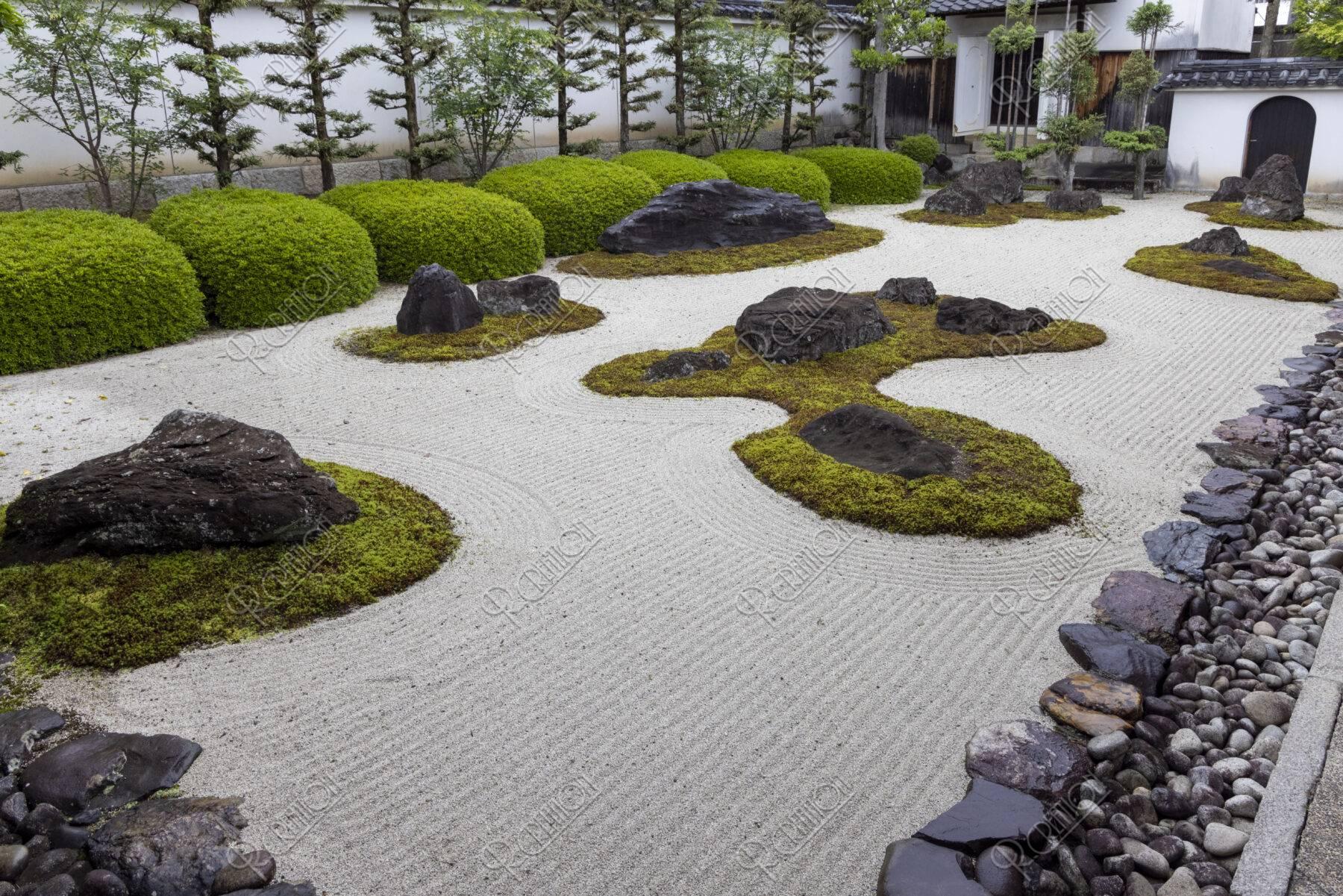 妙蓮寺 石庭