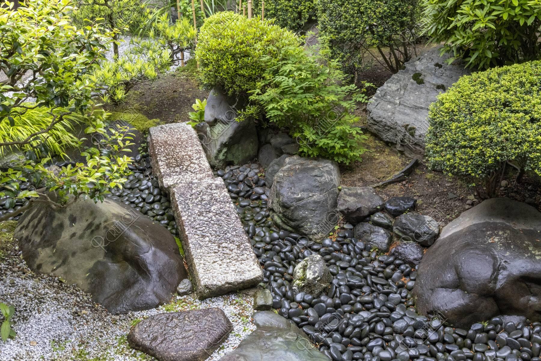 妙蓮寺 庭
