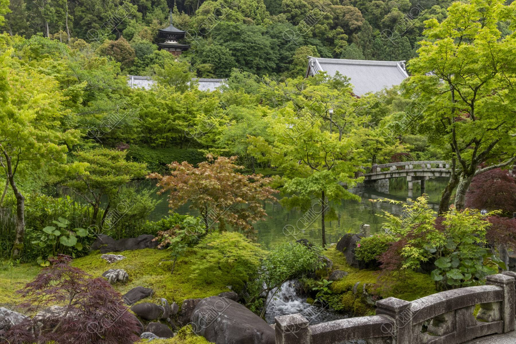 永観堂 庭園
