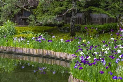 しょうざんの庭